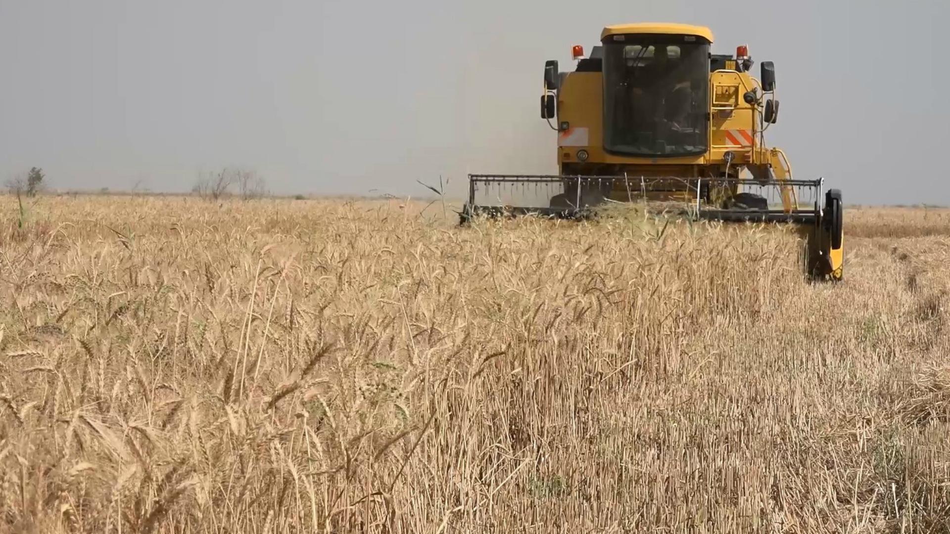 الاتحاد الأوروبي يمنح مساعدات لمزارعي نينوى بقيمة 15 مليون يورو